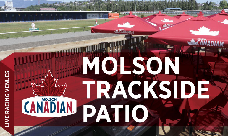 Molson-Patio
