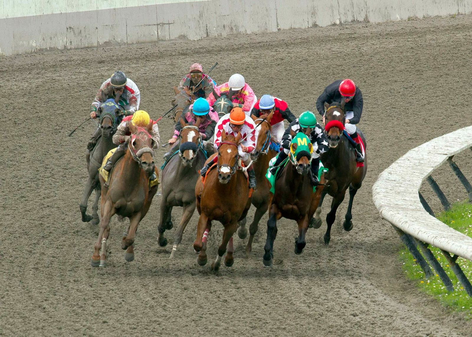 Racing & Wagering at Hastings Racecourse in Vancouver
