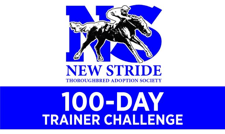 100-Day-Challenge