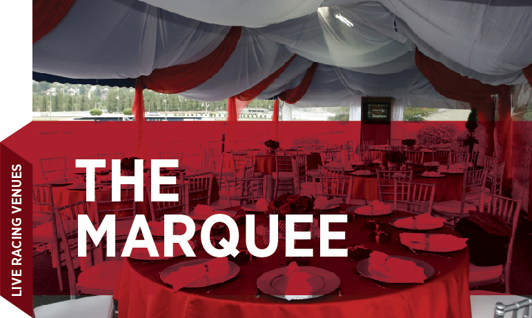 Group Sales Venue - Marquee_Cover