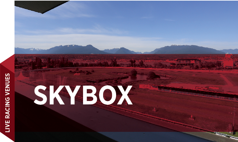 Group Sales Venue - Skybox_Cover