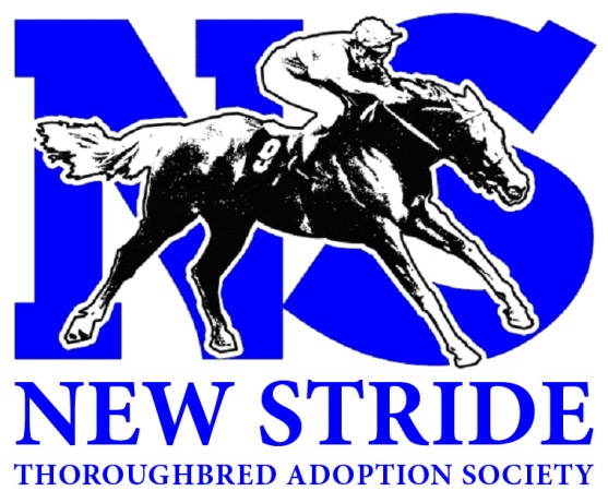new-stride-logo