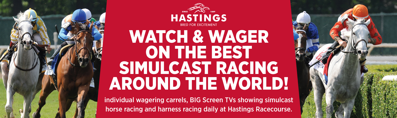 MKT14-233-Watch-Simulcast-at-Hastings