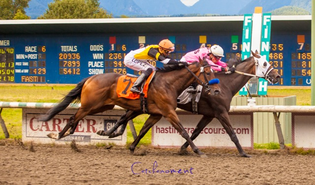 Crushin Candy inside photo's out Dashing Don on the outside – Patti Tubbs Photo